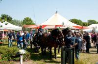 mai2011-161